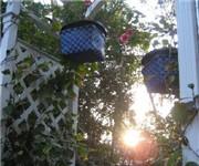 Photo of 44 Spanish Street - St Augustine, FL