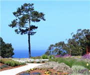 Photo of Cottages At Little River Cove - Little River, CA